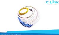 12 Core SC-UPC SingleMode Ribbon Pigtail