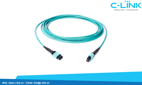 12 Cores MTP Fiber Assembly Cable