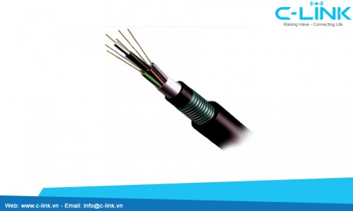 Stranded Loose Tube Cable With Aluminum Tape And Steel Tape (Double Sheaths) DYSFO (GYTA53) C-LINK Phân Phối