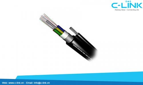 Figure-8 Cable With Steel Tape DYSFO (GYTC8S) C-LINK Phân Phối