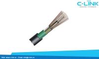 Cáp Quang Treo, Luồn Ống Single-Mode Hoặc Mult-Mode DYSFO (GYTS) C-LINK Phân Phối