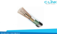 Stranded Loose Tube Cable With Steel Tape (double sheaths) DYSFO (GYTY53) C-LINK Phân Phối