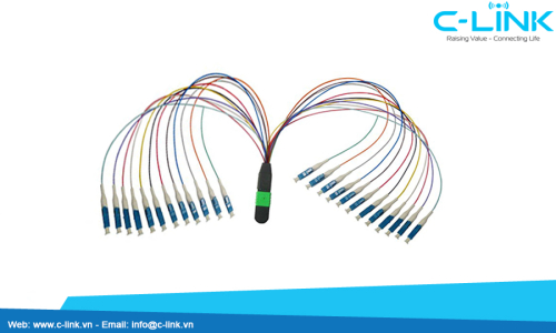 24 cores mpo to LC Fiber Optic Cable Assembly