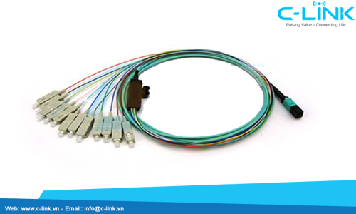 OM3 MPOMTP to SC Fiber Optic Assembly Cable