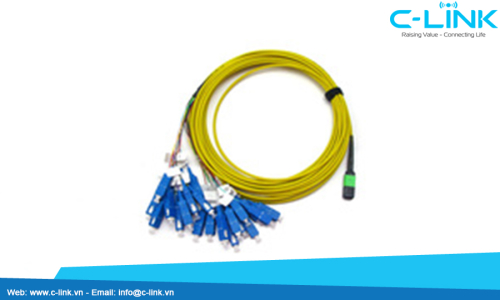 Singlemode MPO-MTP to SC Fiber Optic Assembly Cable